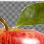 Como recortar uma imagem